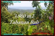 FOR SALE Magnificent 3,860 m2 LAND IN TABANAN BALI TJTB236