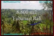 Affordable TABANAN BALI 8,800 m2 LAND FOR SALE TJTB238