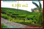 4,100 m2 LAND IN TABANAN BALI FOR SALE TJTB239