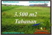 FOR SALE 3,500 m2 LAND IN TABANAN TJTB302