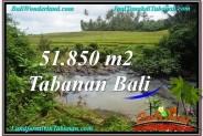Exotic PROPERTY LAND IN TABANAN FOR SALE TJTB289