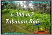 Beautiful PROPERTY 6,300 m2 LAND IN Tabanan Selemadeg BALI FOR SALE TJTB313
