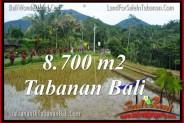 FOR SALE Beautiful 8,700 m2 LAND IN TABANAN BALI TJTB316