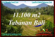 FOR SALE Magnificent PROPERTY LAND IN TABANAN BALI TJTB320