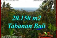FOR SALE LAND IN TABANAN BALI TJTB322