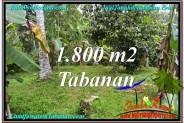 Beautiful PROPERTY Tabanan Penebel 1,800 m2 LAND FOR SALE TJTB293