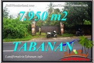 Exotic TABANAN BALI 7,950 m2 LAND FOR SALE TJTB331