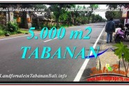Exotic LAND FOR SALE IN Badung TJTB332