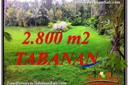 Beautiful PROPERTY 2,800 m2 LAND FOR SALE IN Tabanan Selemadeg BALI TJTB333