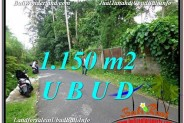 Exotic PROPERTY 1,150 m2 LAND SALE IN UBUD BALI TJUB576