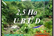 Beautiful PROPERTY 26,000 m2 LAND SALE IN Sentral Ubud TJUB579
