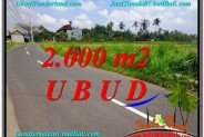 Beautiful PROPERTY 2,000 m2 LAND FOR SALE IN Sentral Ubud TJUB580