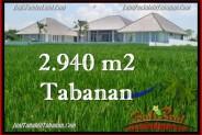 Exotic PROPERTY 2,940 m2 LAND IN Tabanan Selemadeg FOR SALE TJTB265