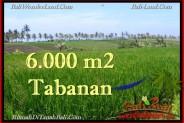 FOR SALE Affordable LAND IN Tabanan Selemadeg BALI TJTB267