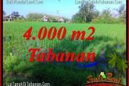 Affordable Tabanan Selemadeg BALI 4,000 m2 LAND FOR SALE TJTB352