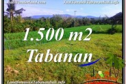 Magnificent PROPERTY LAND FOR SALE IN TABANAN BALI TJTB353