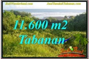 Exotic PROPERTY LAND FOR SALE IN TABANAN BALI TJTB340