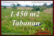 Exotic LAND IN TABANAN FOR SALE TJTB343