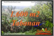 Exotic LAND IN TABANAN FOR SALE TJTB348
