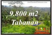 Magnificent PROPERTY LAND IN TABANAN BALI FOR SALE TJTB350