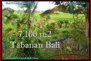 Affordable PROPERTY 7,100 m2 LAND IN Tabanan Selemadeg FOR SALE TJTB240