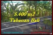 Affordable PROPERTY TABANAN LAND FOR SALE TJTB241