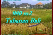 Beautiful LAND IN TABANAN FOR SALE TJTB244