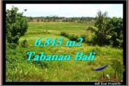 Beautiful PROPERTY LAND FOR SALE IN TABANAN BALI TJTB245
