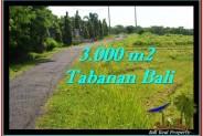 Affordable TABANAN BALI 3,000 m2 LAND FOR SALE TJTB246