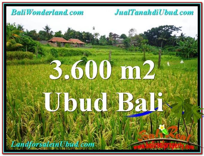 Magnificent PROPERTY LAND IN UBUD FOR SALE TJUB566