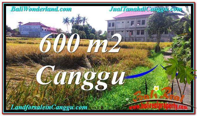 Affordable LAND IN Canggu Pererenan FOR SALE TJCG211