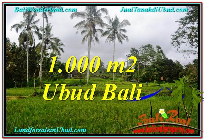 Beautiful PROPERTY 1,000 m2 LAND FOR SALE IN Ubud Payangan TJUB570