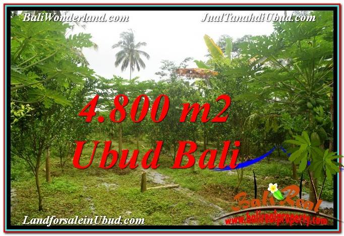 LAND SALE IN Ubud Payangan BALI TJUB571