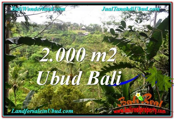 FOR SALE Affordable LAND IN Ubud Payangan BALI TJUB573