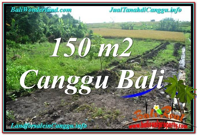 LAND FOR SALE IN Canggu Pererenan TJCG213