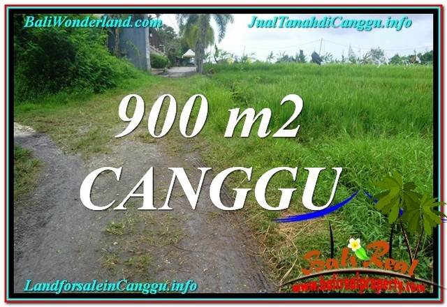 Magnificent LAND SALE IN Canggu Batu Bolong  TJCG215