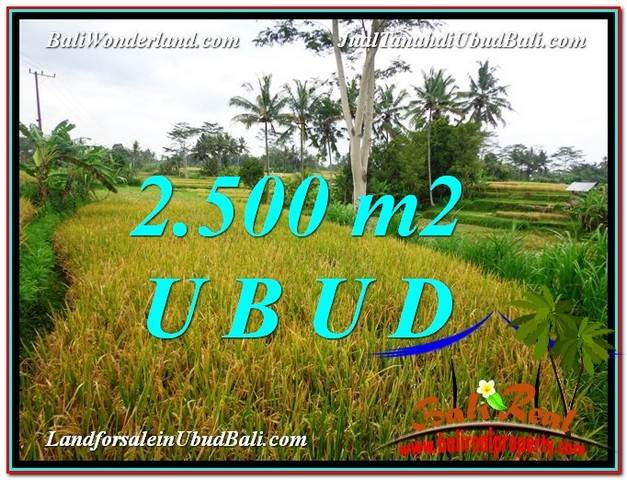 Magnificent PROPERTY Ubud Pejeng 2,500 m2 LAND FOR SALE TJUB577