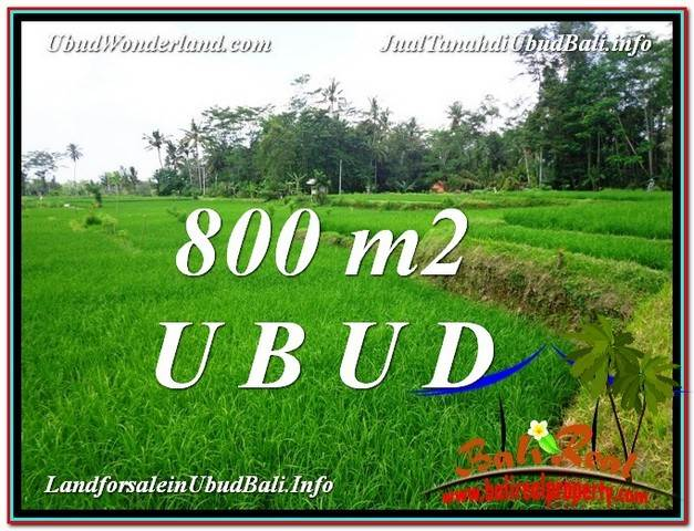 FOR SALE Affordable LAND IN Ubud Pejeng BALI TJUB581
