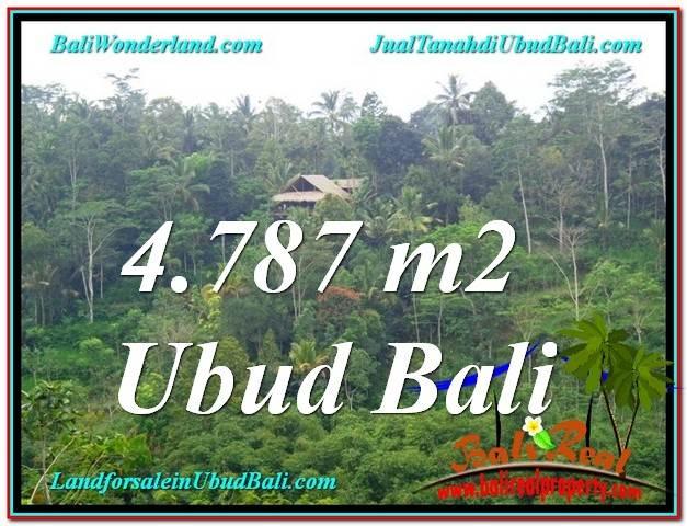 Beautiful LAND FOR SALE IN UBUD TJUB603