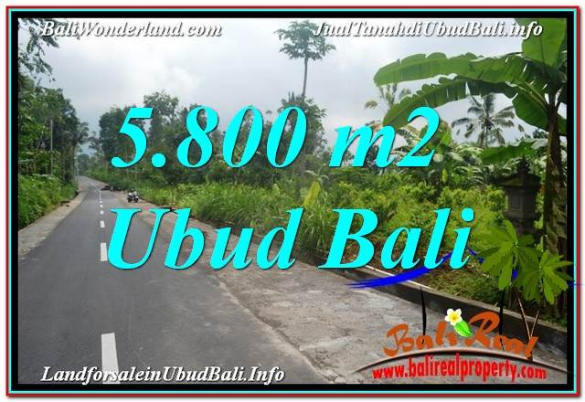 Beautiful LAND IN UBUD FOR SALE TJUB637